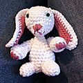 lapin blanc de face