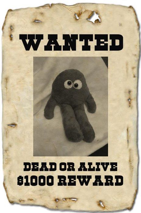 Wanted_Y_ti