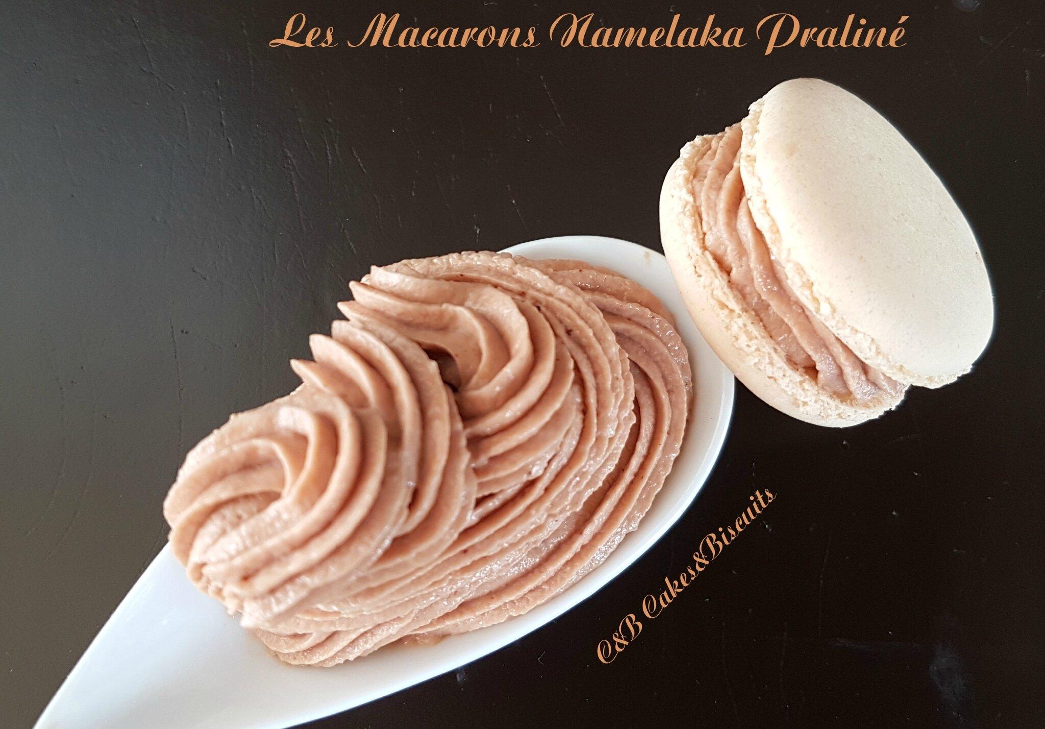 Les Macarons Namelaka Praliné