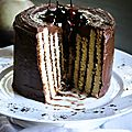 Gâteau roulé vertical, striped cake, au chocolat et noisette