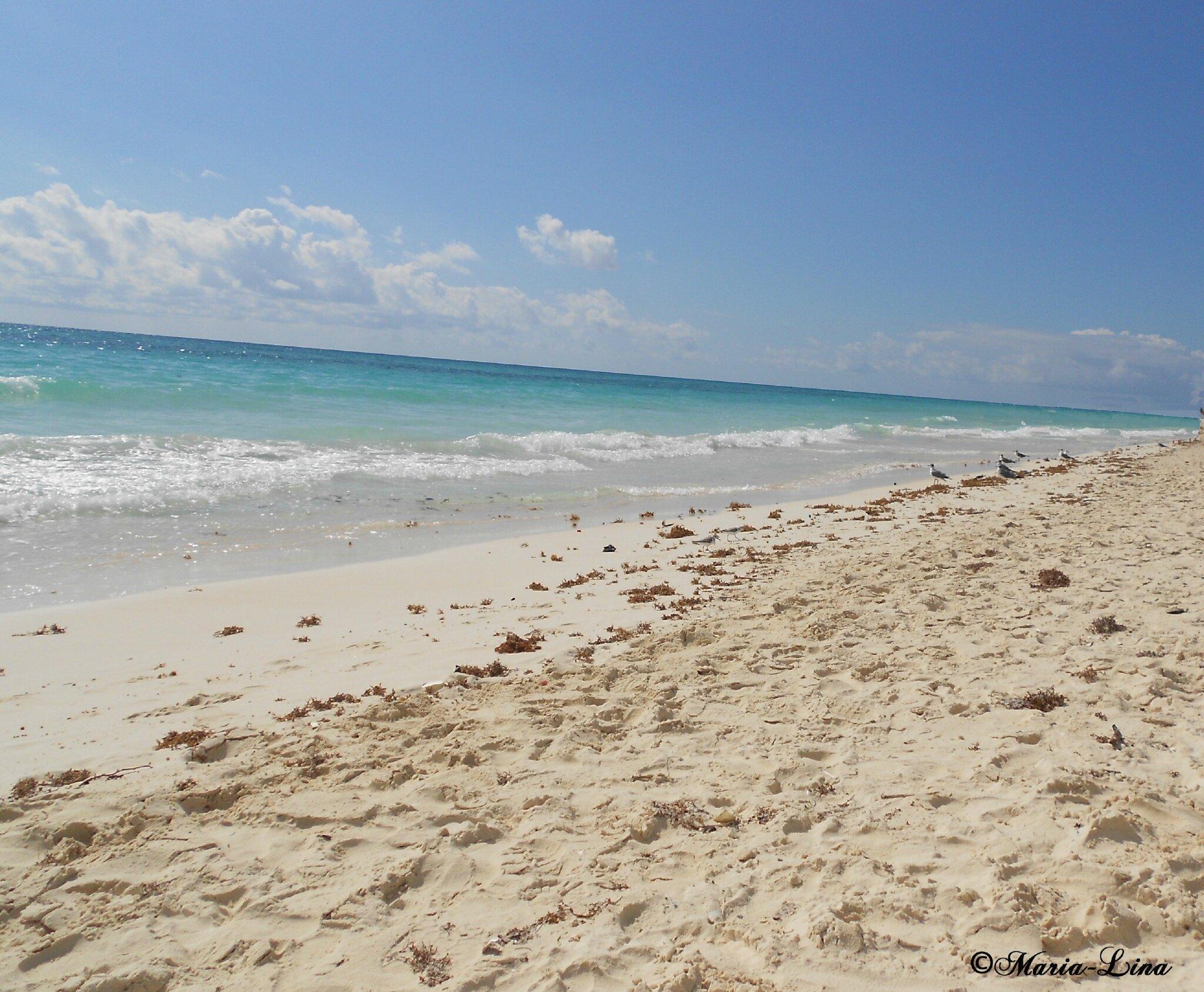 infos sur les images du sable du plage arts et voyages. Black Bedroom Furniture Sets. Home Design Ideas