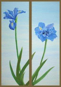 -2008- Iris -75x30 (x2)