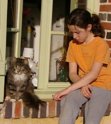 2008 02 S et chat