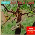 Pete Rugolo And His All Stars - 1956 - Out On A Limb (Emarcy)