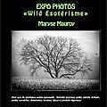 Expo photos