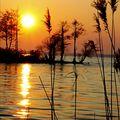 coucher de soleil Lac de sanguinet (2)