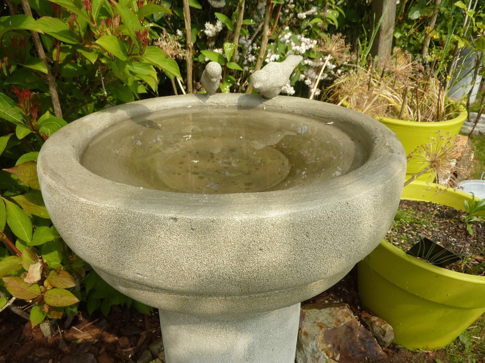 Bassin plastique for Bassin de jardin en plastique