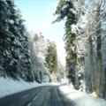Encore quelques photos de neige...