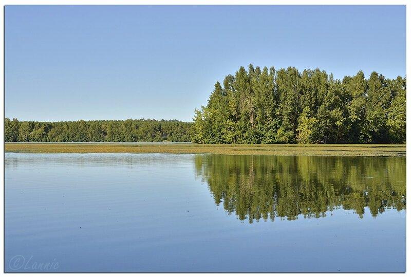 Tarn_&_Garonne_lac_reflets