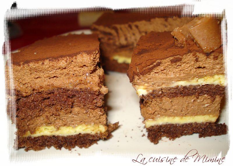Gateau a la mousse de chocolat et genoise