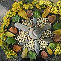 mandala de galets avec fleurs de verge d'or et d'arbousier