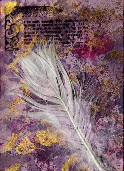 Echange plumes MD2