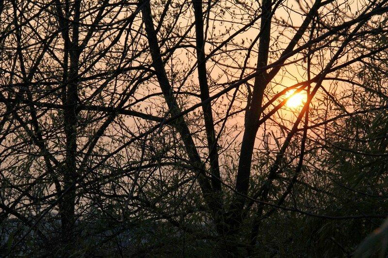 16-Parc Belleville, coucher de soleil_2393