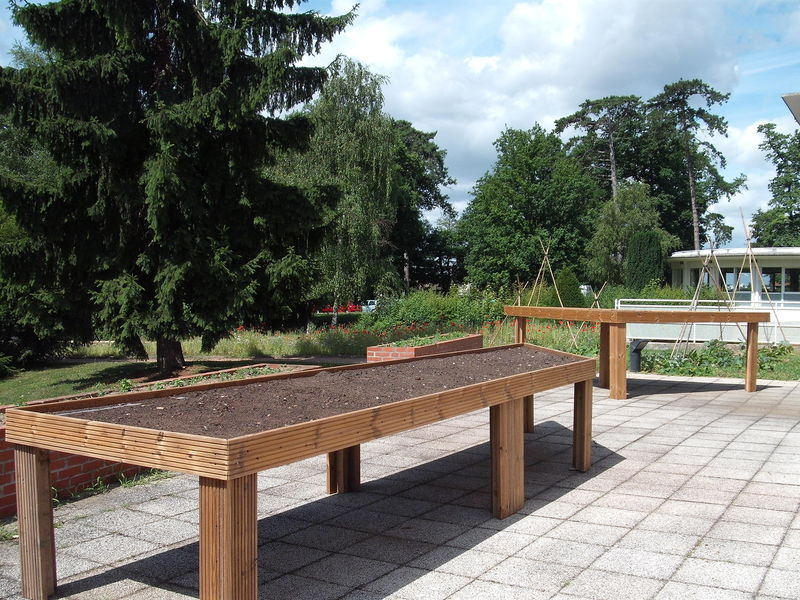 Le jardin th rapeutique de l 39 h pital d 39 eaubonne big for Jardin therapeutique