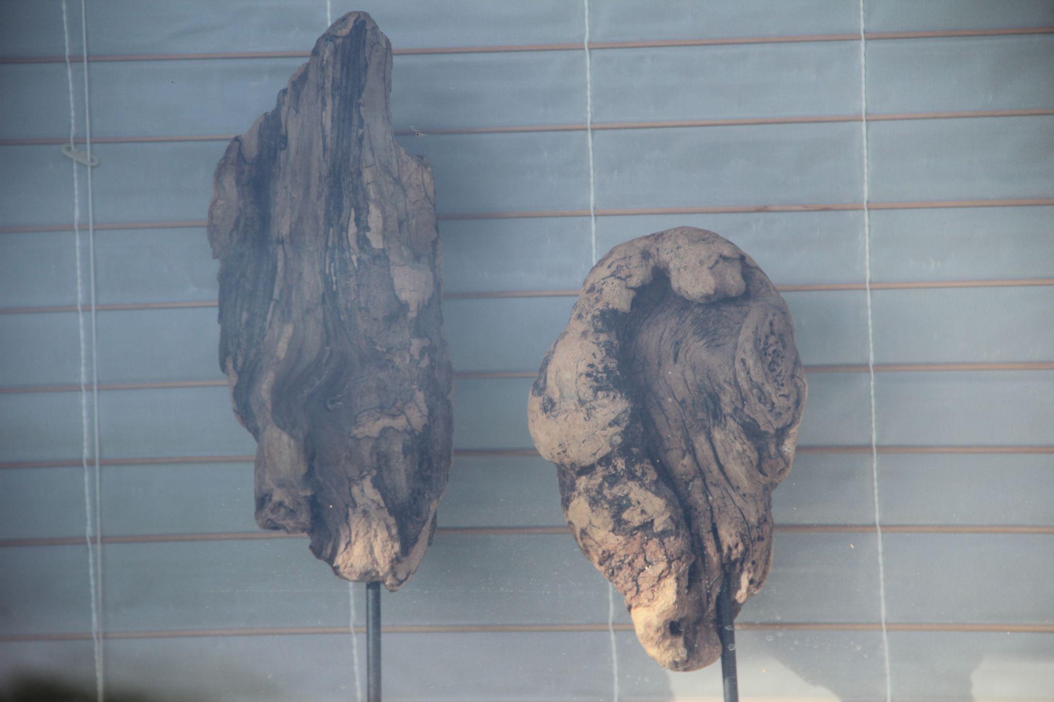 Sculpture En Bois A Vendre - Sculpture en bois pour intérieur (à vendre) Pointes de folie