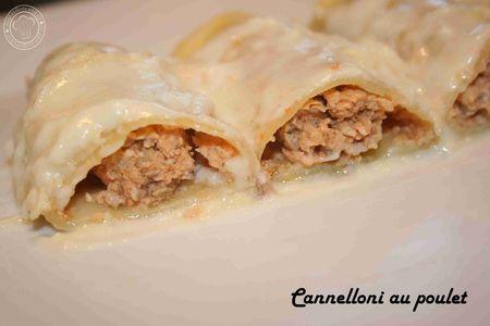cannelloni_poulet