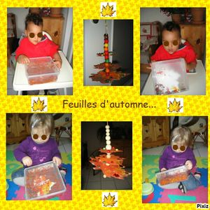 photocollagefeuille d'automne