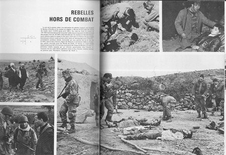 algerie_rebelle