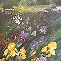champ d'iris