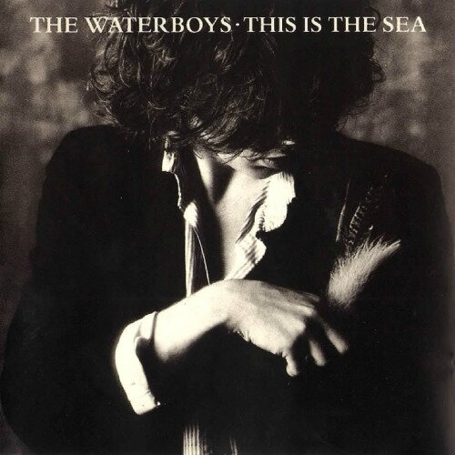 the water boys this is the sea