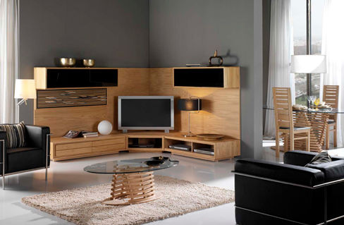 salon meuble tv composition 4 photo de clorofil meubles et d coration cologiques. Black Bedroom Furniture Sets. Home Design Ideas
