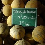 melons_a__1000