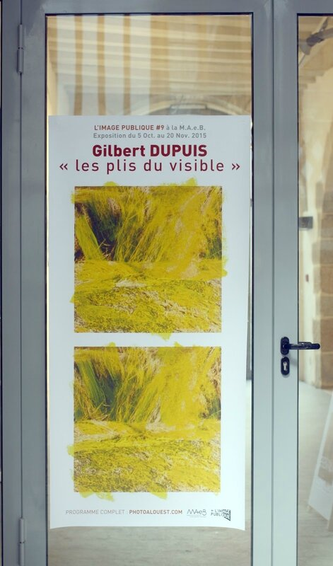 dupuis2015