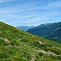 Massif de Sesques et Pic d'Ossau depuis les pentes du Soulaing...