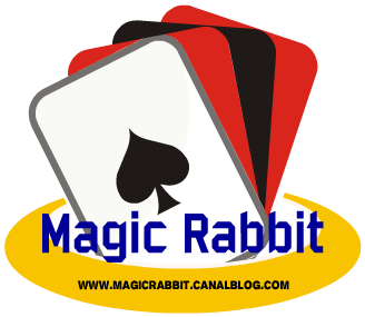 Logo magic rabbit