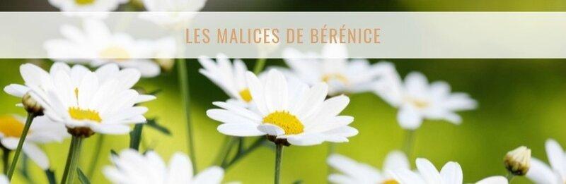 Blog Bérénice