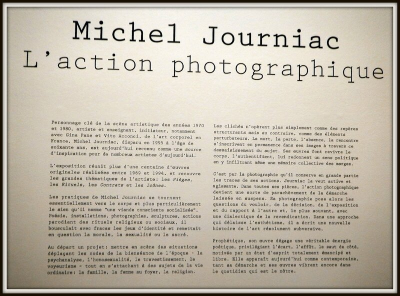 michel journiac (5)
