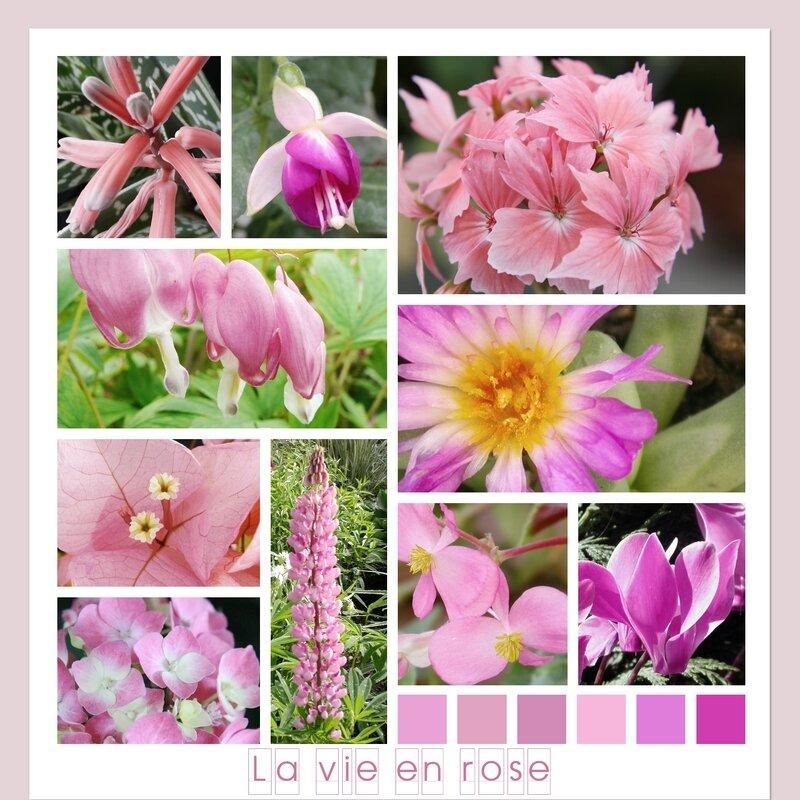 moodboard rose_meriop_2