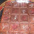 Moelleux marron chocolat
