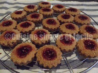 mini linzer 05