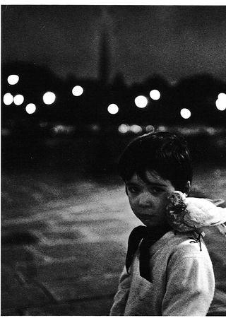 l_enfant_et_la_colombe_robert_doisneau_1958