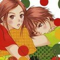 [anime review] lovely complex 23