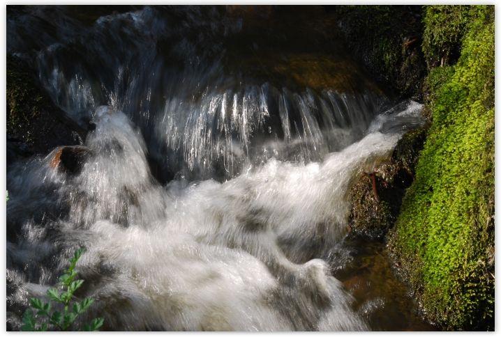 ruisseau_mars4