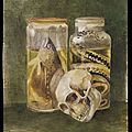 Potter, Bertram (1872 - 1918) Still life study of a pickled fish and snake with a human skull; England, Great Britain Watercolour on paper, April 1889 Victoria & Albert Museum, AR.4:406-2006