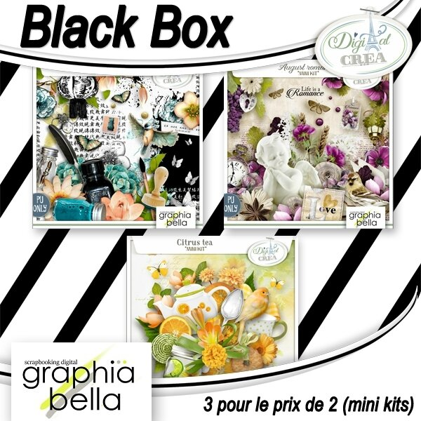 GBE_Black_box_mini_kits