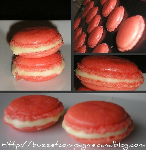 montage_macarons