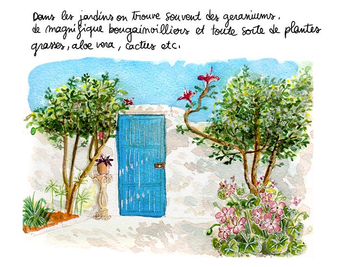 tunisie_vegetation5