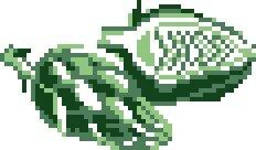 artichaut02 grille pt