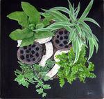 tableau_vegetal__CN