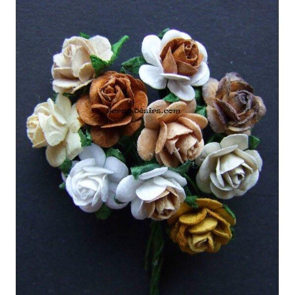 roses-marron-15