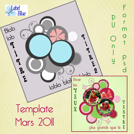 preview_template_salade_de_fruits