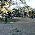 City Park (128)