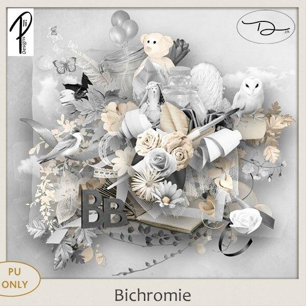 PliDesigns_bichromie_PVDch