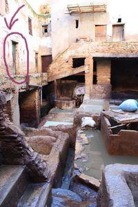 chez mon guide Tanneries Chouwara FES Maroc