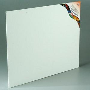 carton toilé
