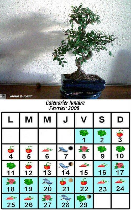 jardiner avec la lune en f vrier 2008 le jardinoscope cot pratique les bons gestes faire. Black Bedroom Furniture Sets. Home Design Ideas